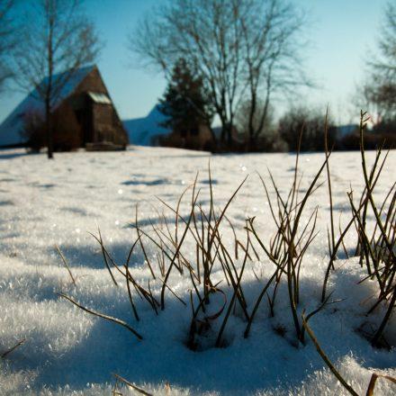 ferienhaus_winter_gras